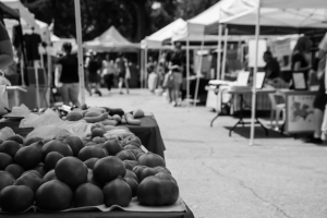 estab farmers market